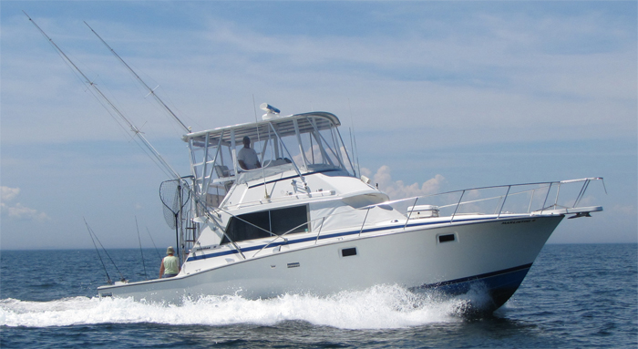 connecticut charter fishing marlintini sportfishing inc